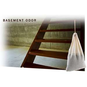 Getting Rid Of That Damp Basement Smell Household